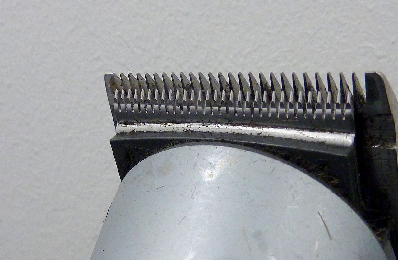 Cortadora de pelo, ¿Cómo elegirla